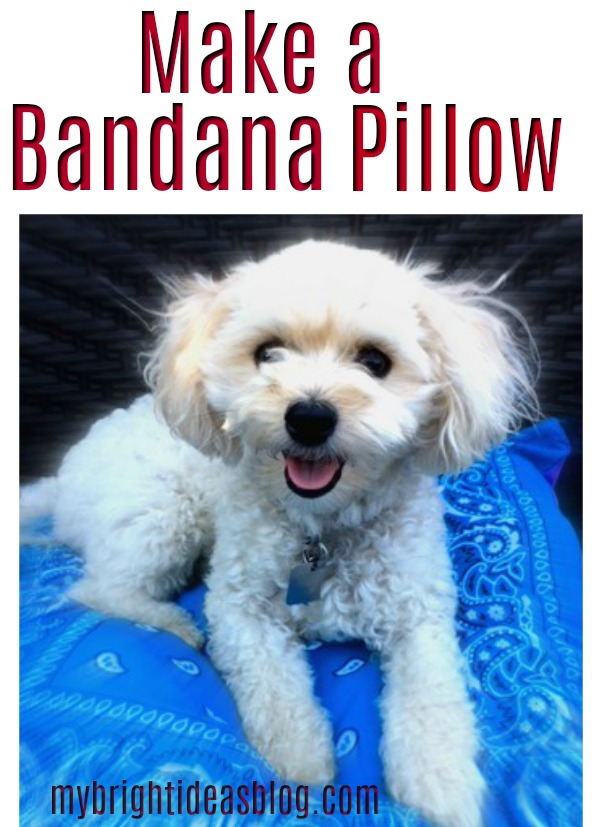 How to make a pillow out of two bandanas. This is an easy sewing project anyone can do and it looks great! mybrightieasblog.com